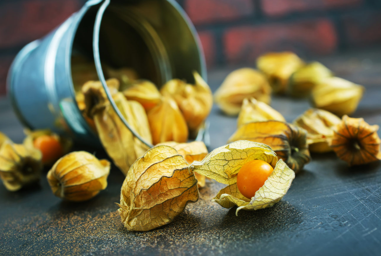 Alchengi | Flick on Food
