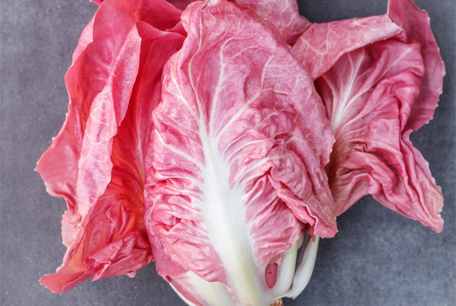 Radicchio_Rosa | Flick on food